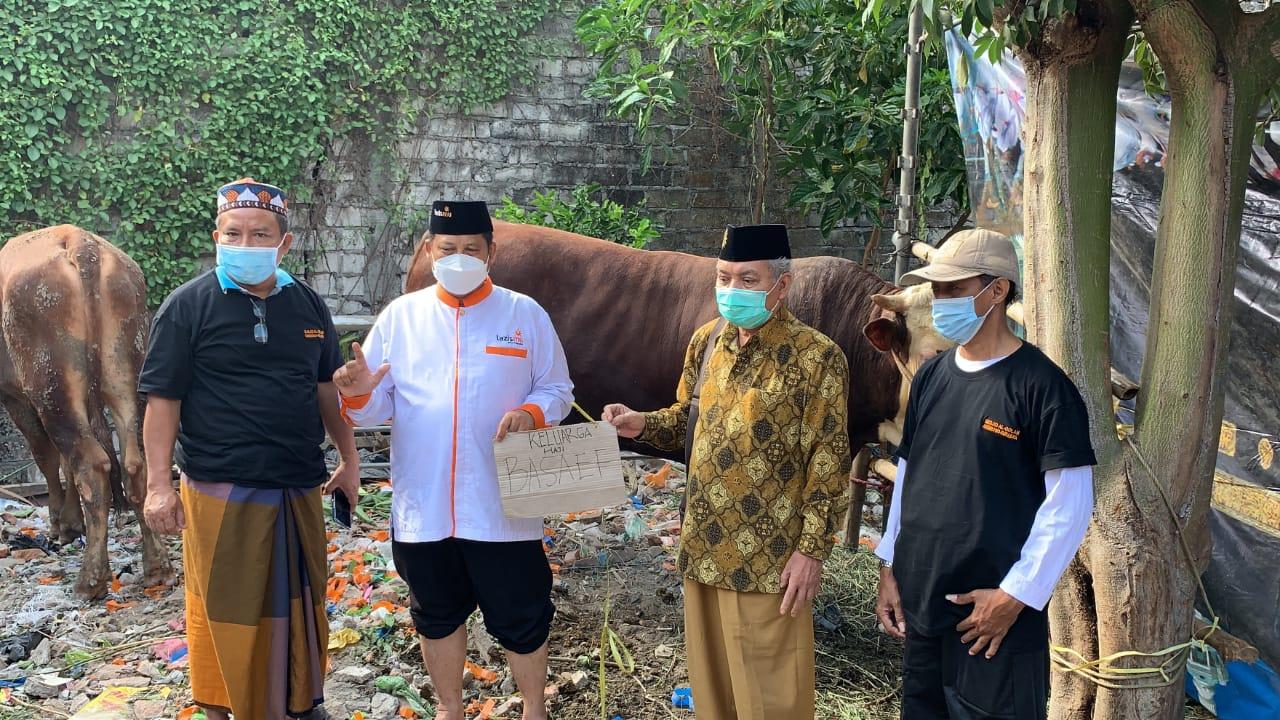 Cover Dapat Donasi dari Arab Saudi, Lazismu Surabaya Salurkan Lima Ekor Sapi